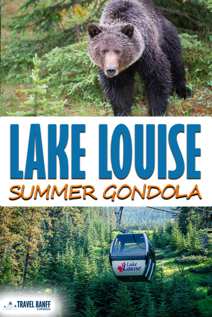 Experience the Lake Louise Summer Gondola! One of the best things to do in Lake Louise in the summer. Visitors can enjoy a sightseeing chairlift to spot grizzly bears, an interpretive centre, dining and even guided hikes.