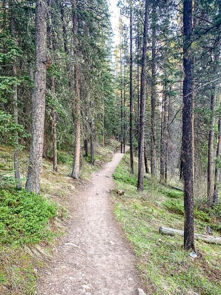 Lake Minnewanka Hiking Trail