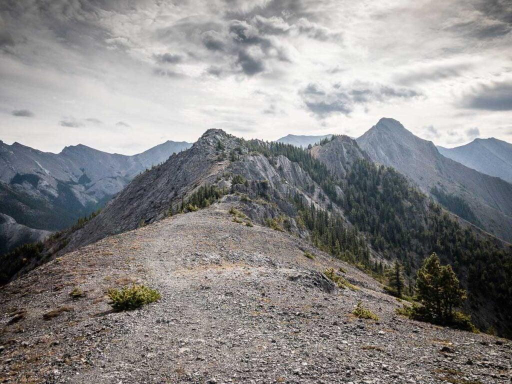 View of Wasootch Ridge summit from hiking trail
