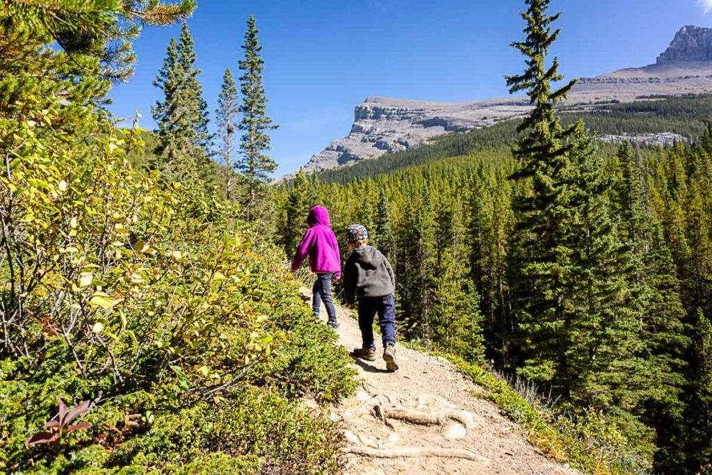 Views from West Wind Pass trail in Kananaskis