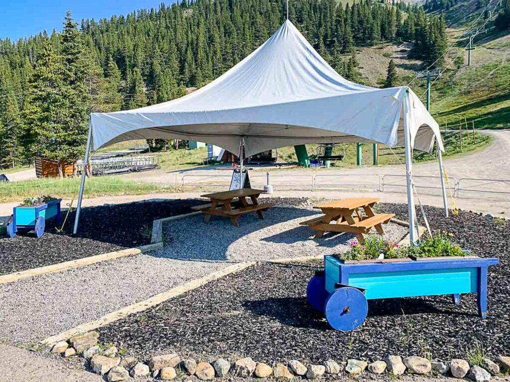 picnic area - Lake Louise Gondola