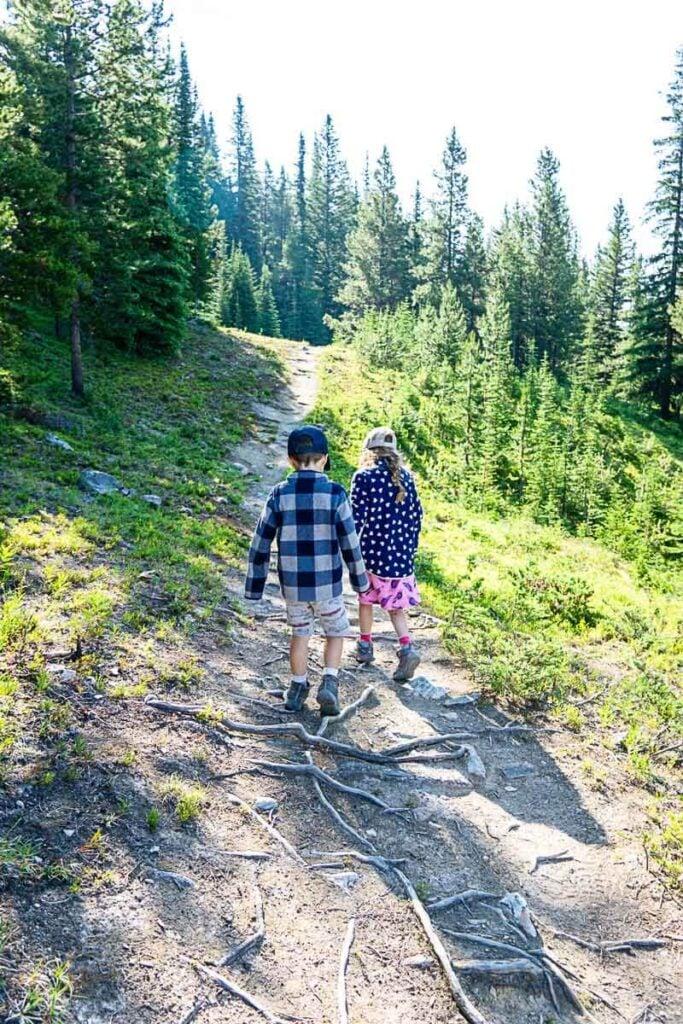 Hiking the Pika Trail - Lake Louise gondola hikes
