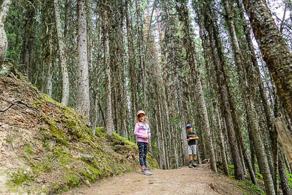 Rawson Lake Hike with Kids