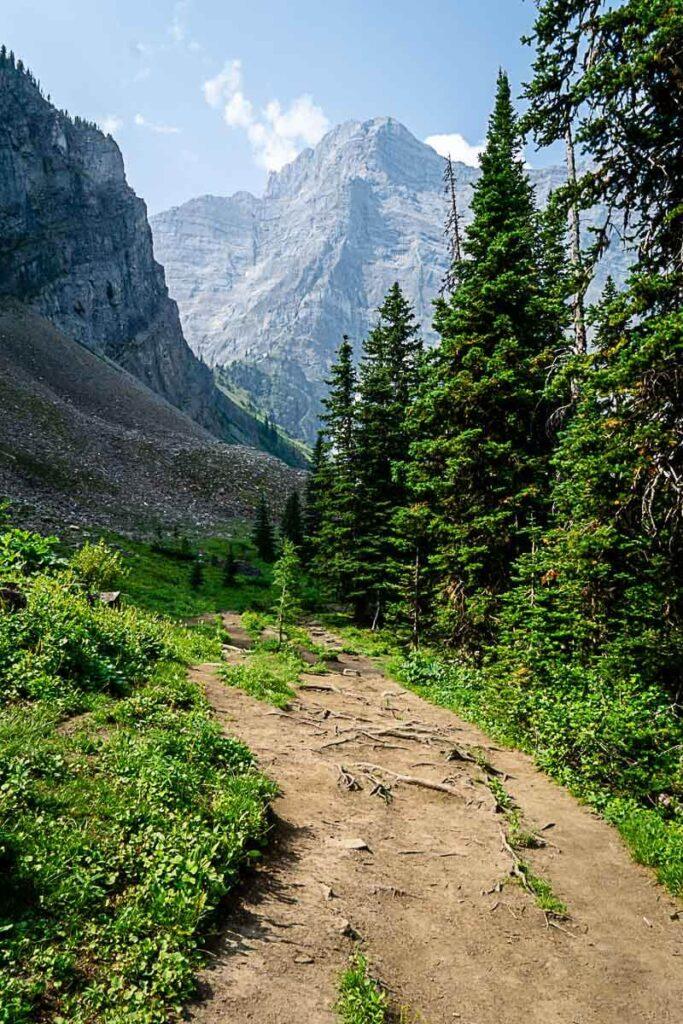 Rawson Lake Trail