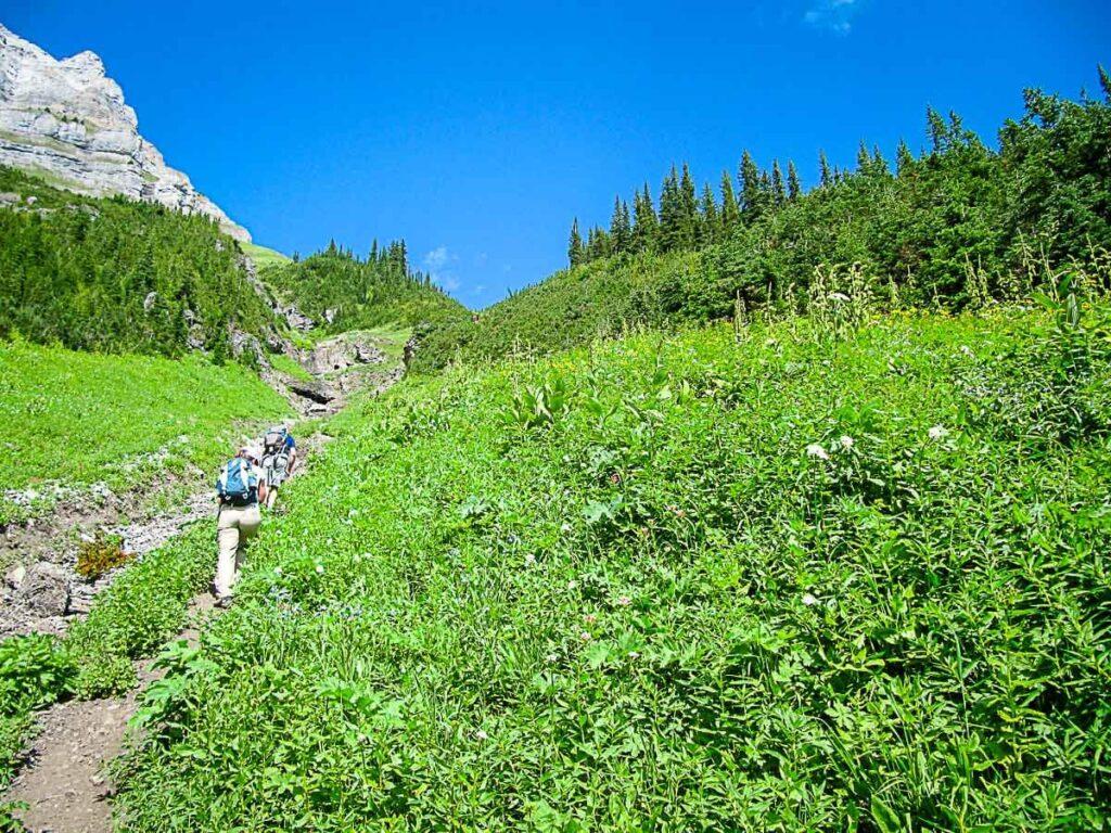 Hiking to Sarrail Ridge via Rawson Lake trail