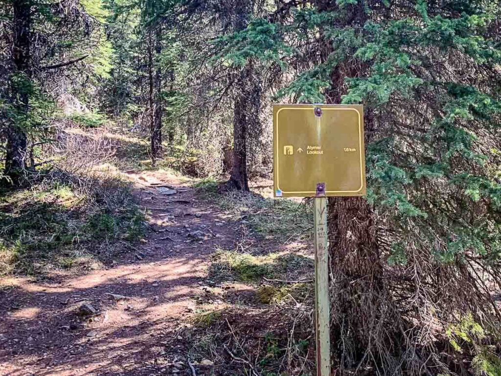 trail sign at Junction to Aylmer Pass or Aylmer Lookout - Banff hiking trails