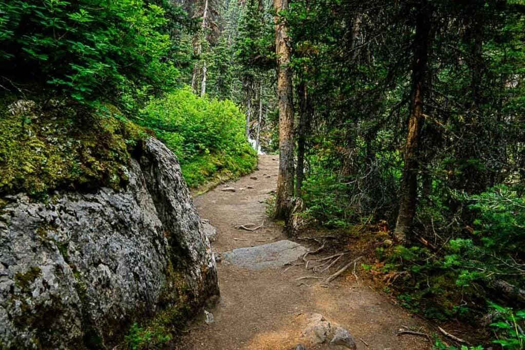 Upper Kananaskis Lake Trail to Rawson Lake hike