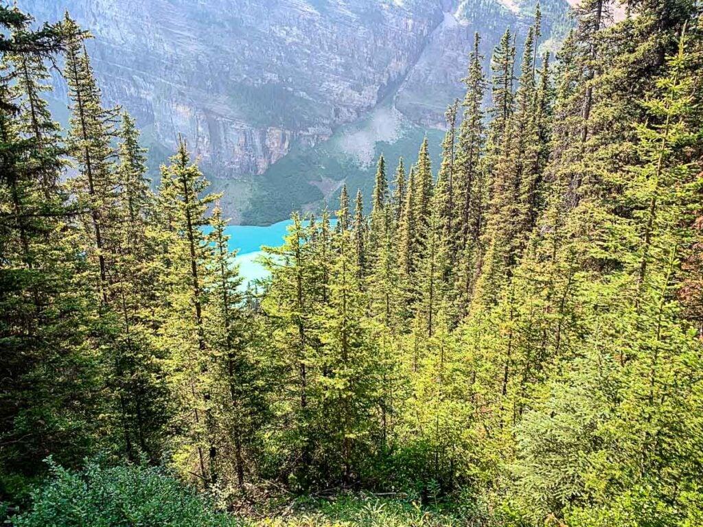 views of blue Lake Louise along lake louise tea house hike