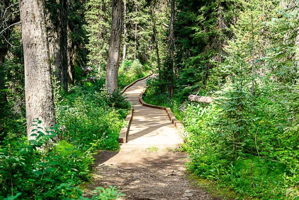 Wooden Boardwalk near end of Boom Lake hike