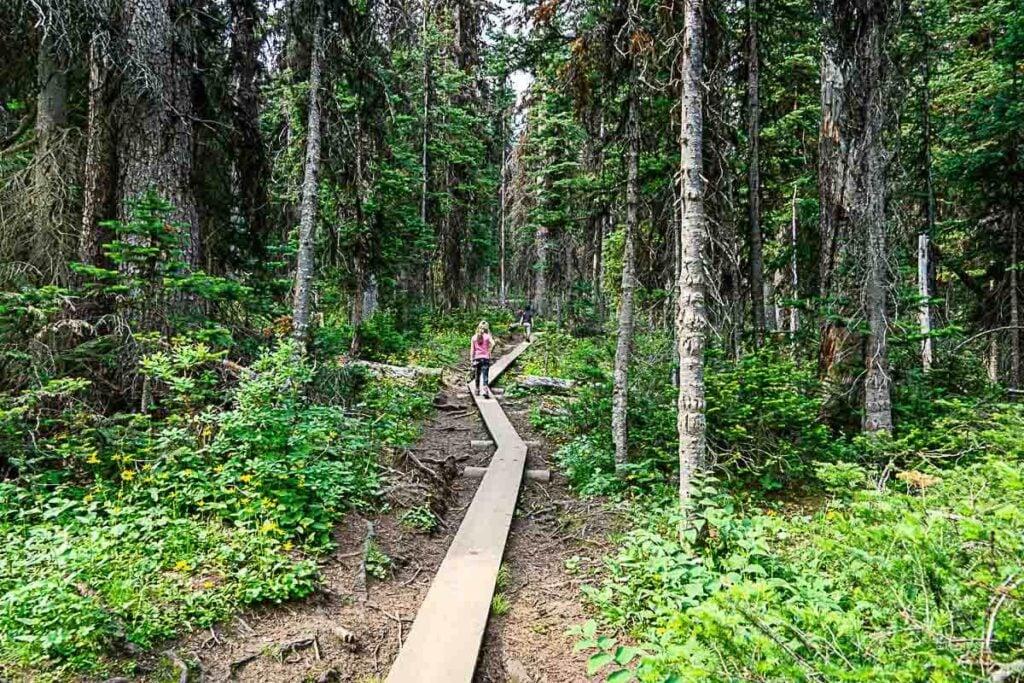 Wooden Boardwalk on Rawson Lake trail