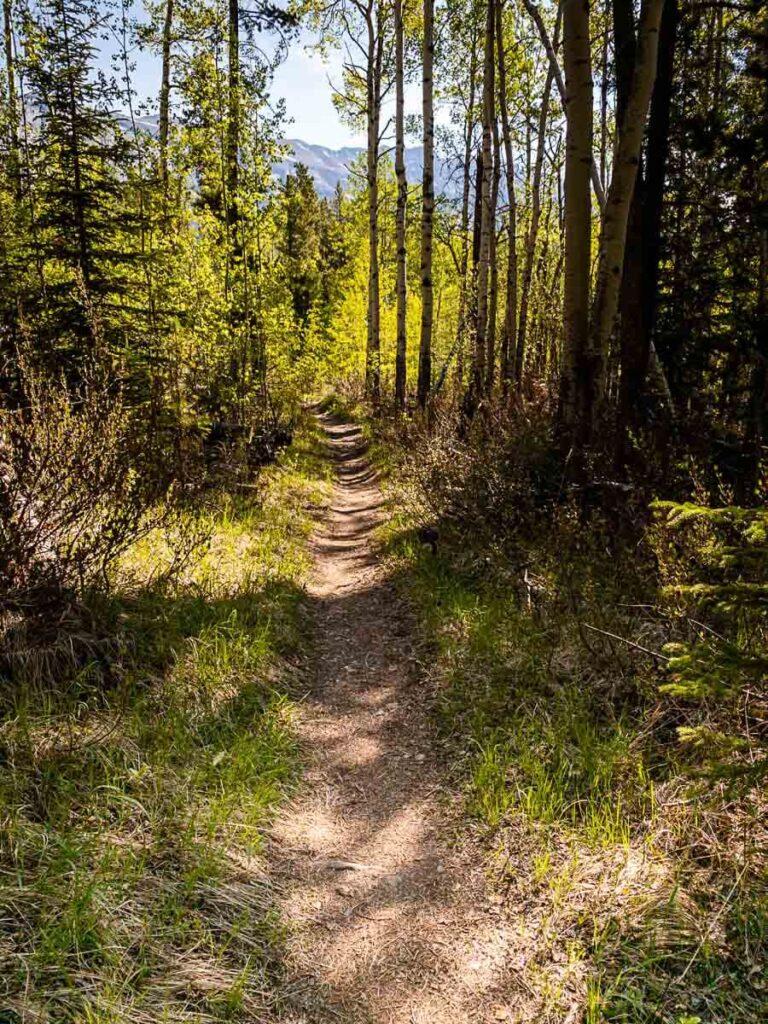 Lake Minnewanka Hike - best hiking trails in banff