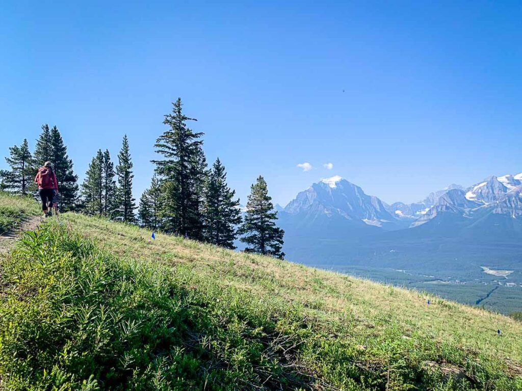 hikes from sightseeing gondola in Lake Louise
