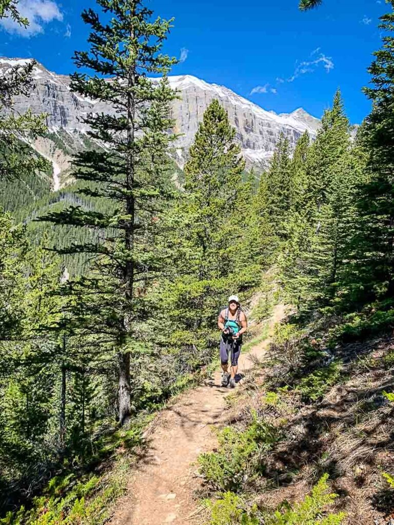 hiking Aylmer Lookout trail in Banff