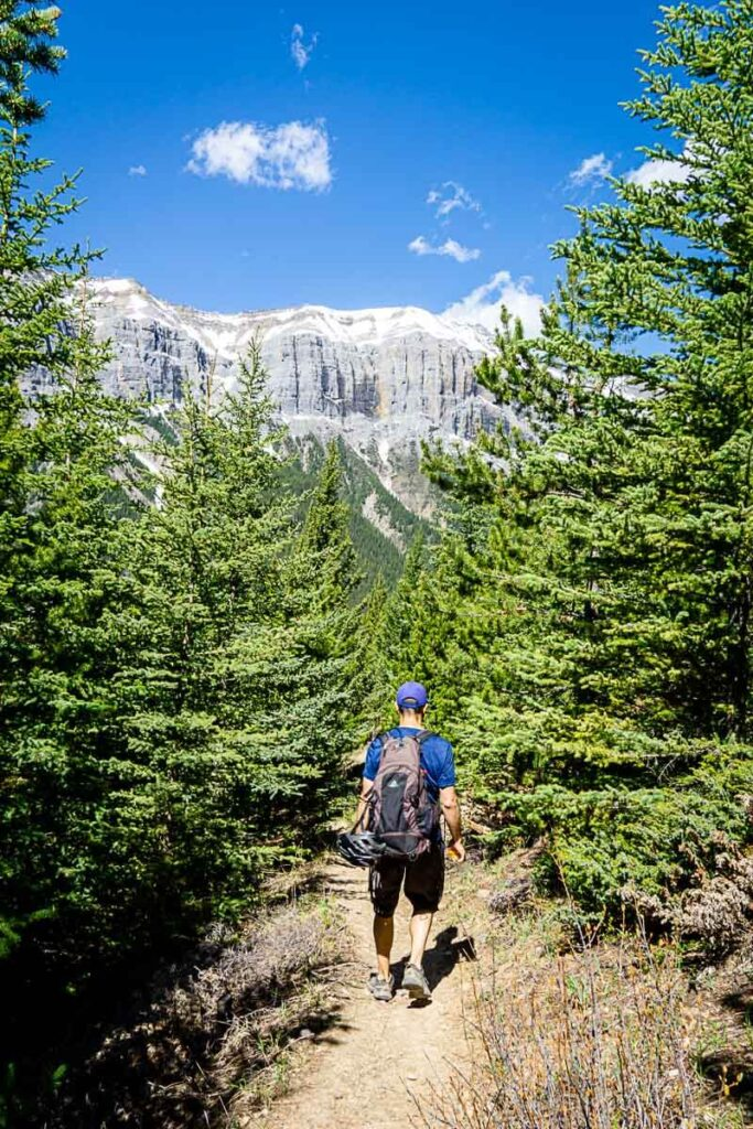 hiking down from Aylmer Lookout - banff hike