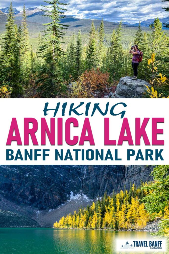 Hiking to Arnica Lake in Banff National Park offers hikers incredible views any time of year. The Arnica Lake hike is also an incredible larch hike in Banff in the fall. Don't miss this wonderful Banff hike!