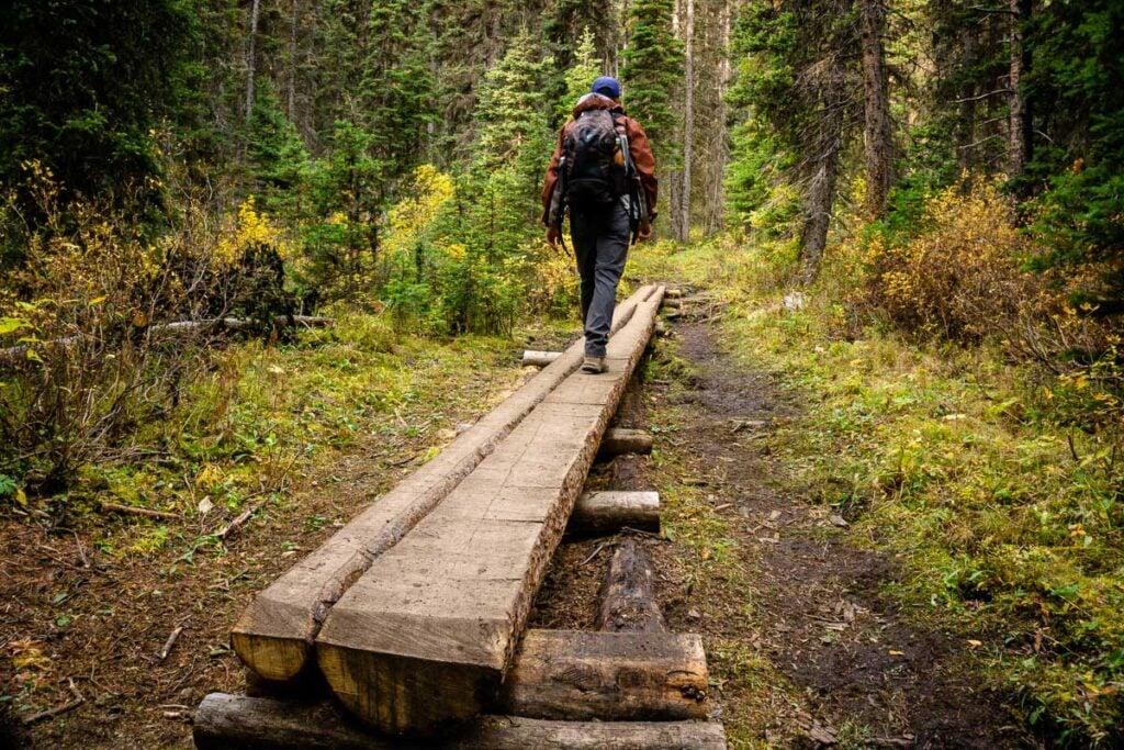 boardwalk along Taylor Lake hike in Banff