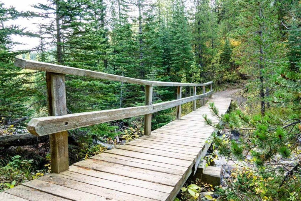 Bridge crossing stream on Arnica Lake hike