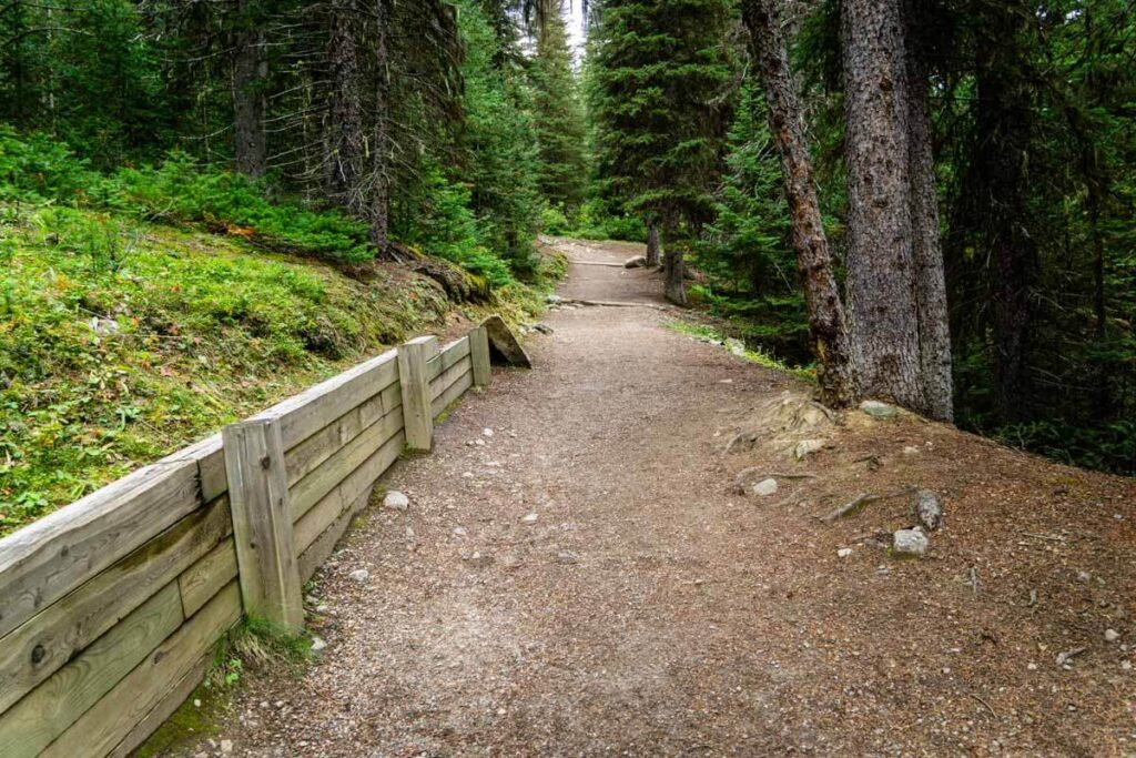 easy stretch of larch valley trail