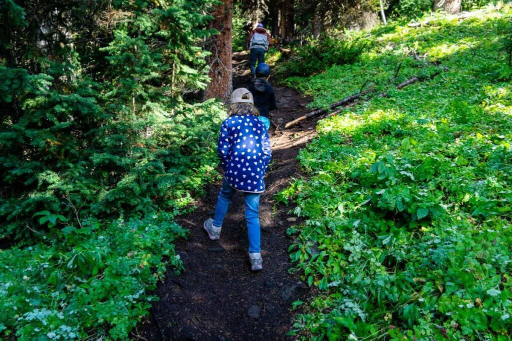 The Arethusa Cirque hike is a fun activity for kids in Kananaskis Country
