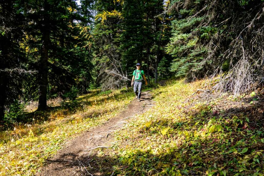 Hikes in Banff over 15km long
