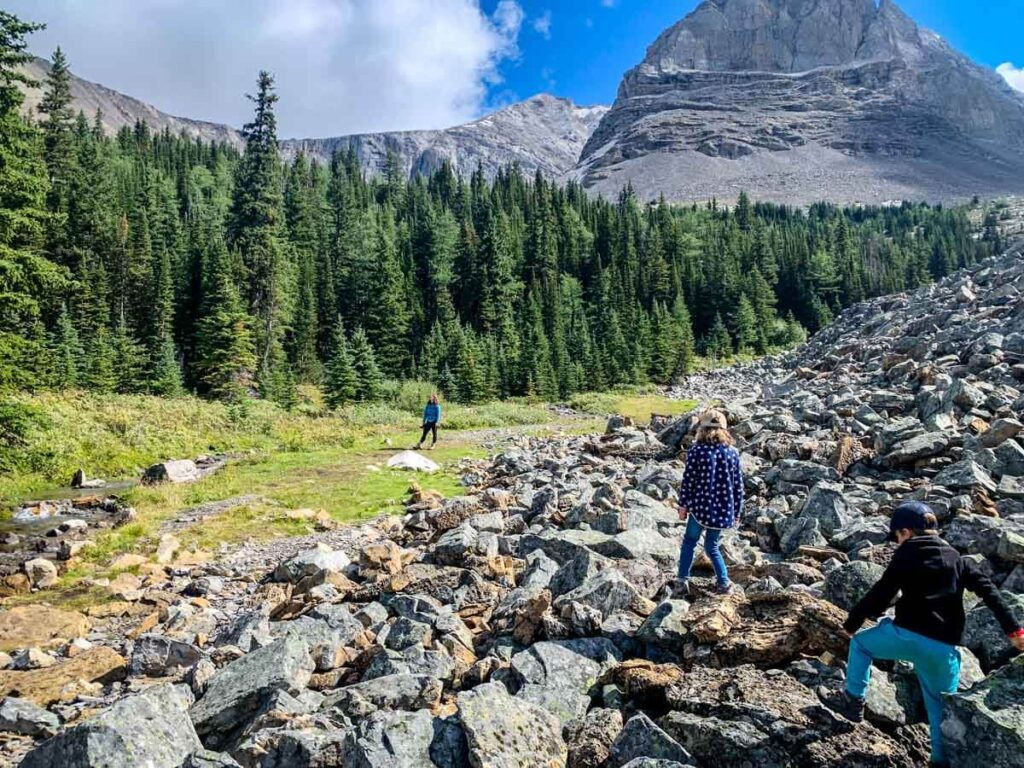 The Arethusa Cirque trail has a few short challenges, but otherwise it's an easy Kananaskis hike