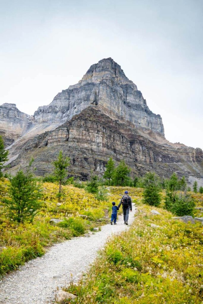 Hiking Larch Valley Trail in Banff National Park