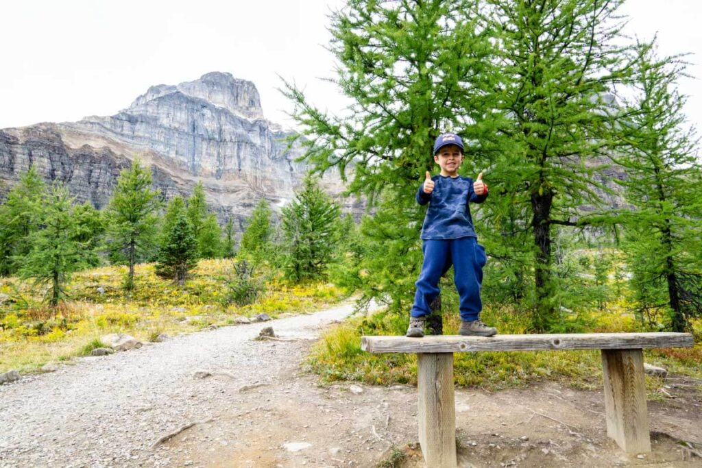 larch valley hike with kids in Banff