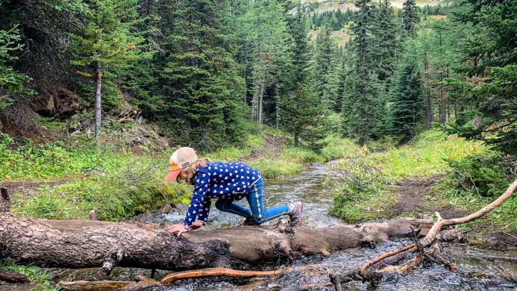 The Arethusa Cirque trail is a fun thing to do with kids in Kananaskis