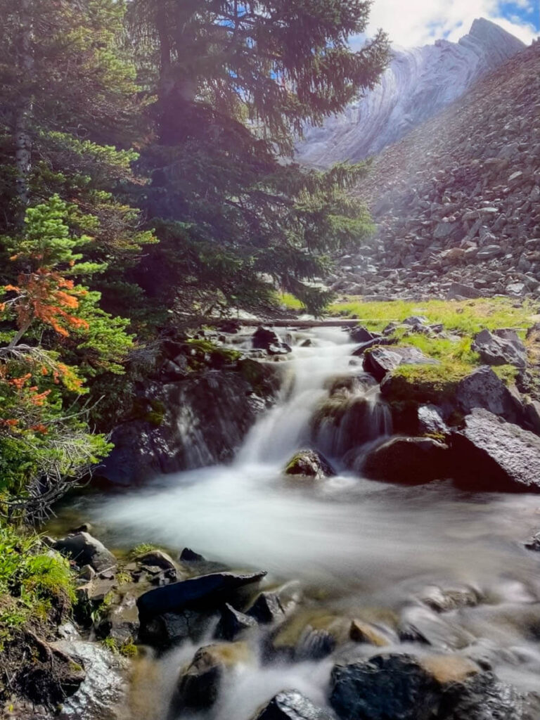 larch trees are not the only attraction on the Arethusa Cirque trail - it has a series of small waterfalls too