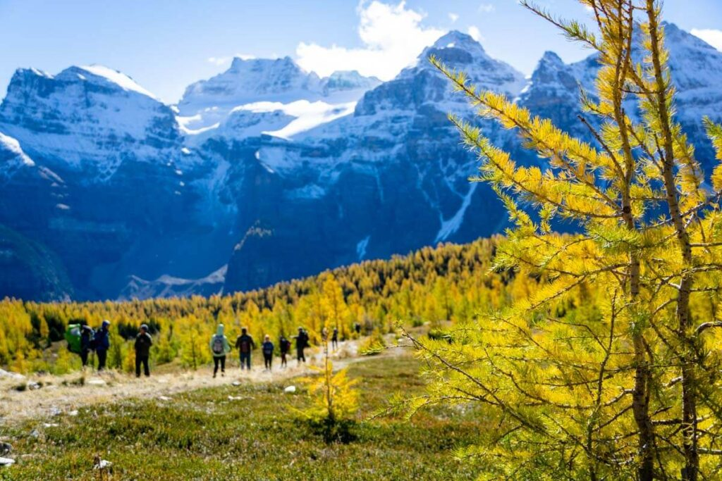 arches & Ten Peaks on Larch Valley hike in Banff