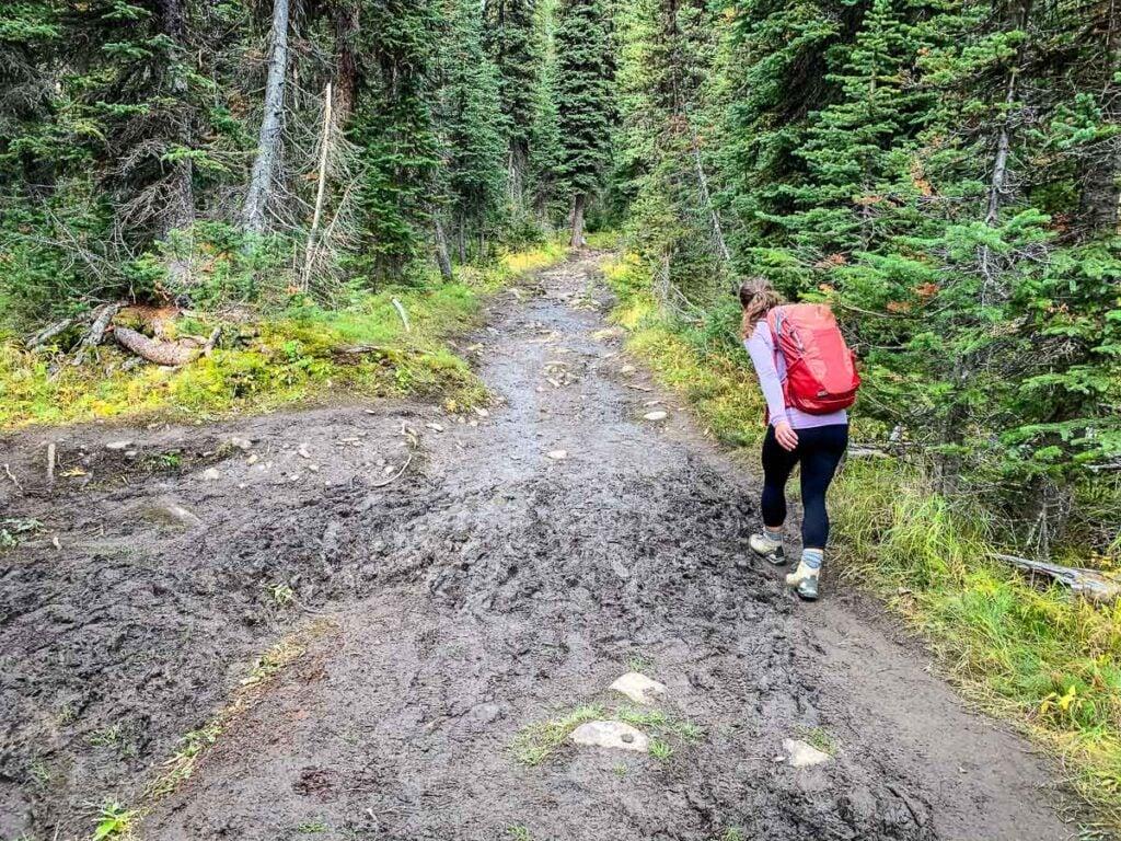Mud along Taylor Lake hiking trail in Banff