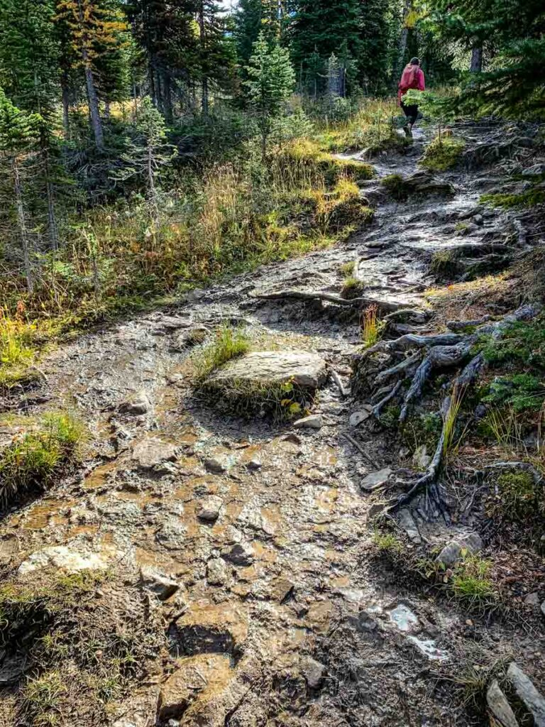 muddy trail conditions are one of the reasons this is a challenging hike in Banff