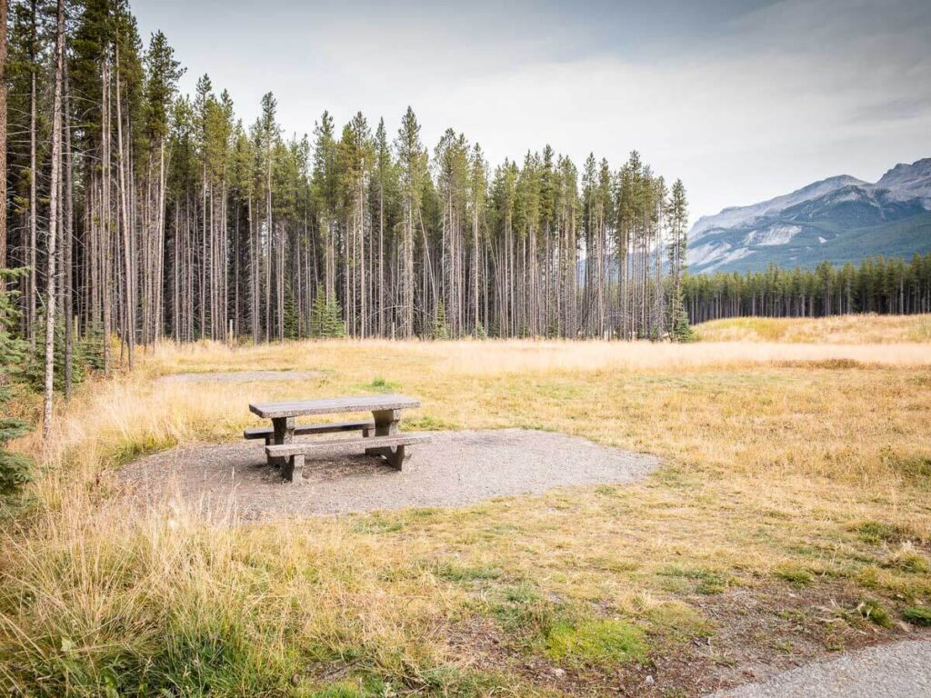 Picnic table in Taylor Lake parking lot