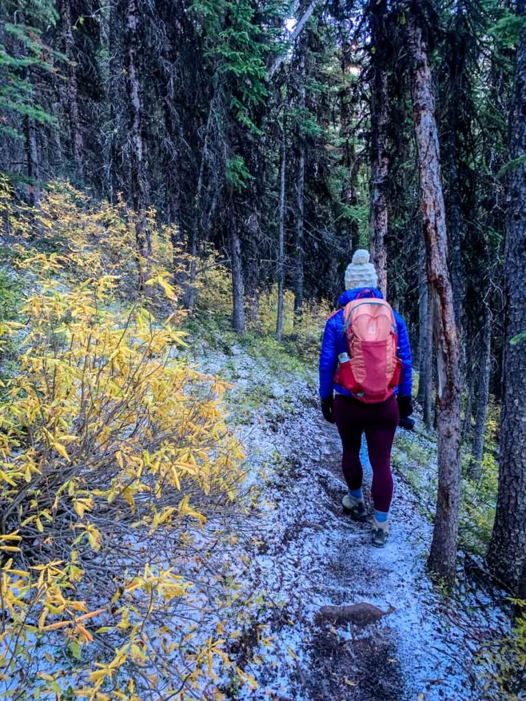 Many hikers choose to go to the Pocaterra Cirque trail instead of the summit