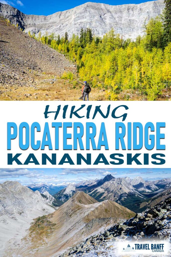 Don't miss hiking Pocaterra Ridge in Kananaskis. It's one of our favorite fall hikes that's well worth the effort! Aside from incredible views, this is also a great larch hike in Kananaskis.