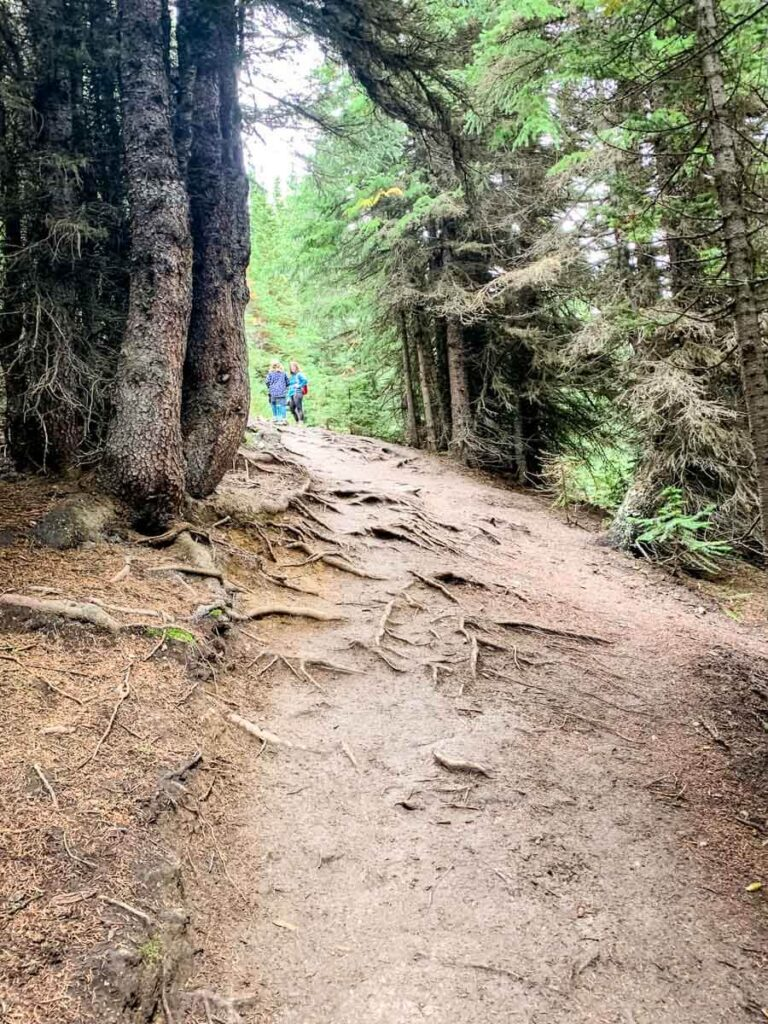 Ptarmigan Cirque hiking trail Kananaskis