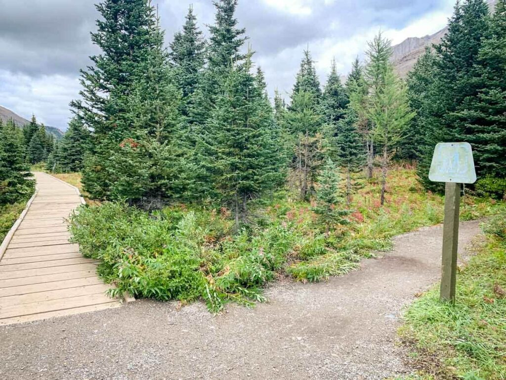 Junction to Ptarmigan Cirque Trail from Highwood Meadows