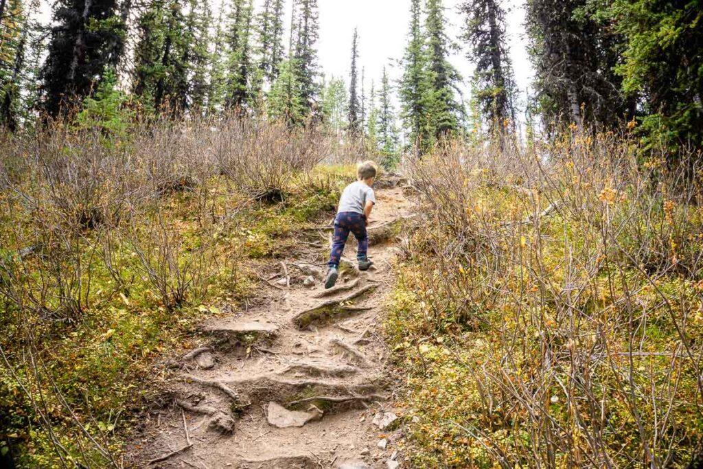 boy hiking Rummel Lake trail in Kananaskis