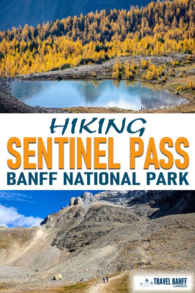 Sentinel Pass Hike in Banff National Park. Hike to Sentinel Pass via Larch Valley, you won't be disappointed by the views!