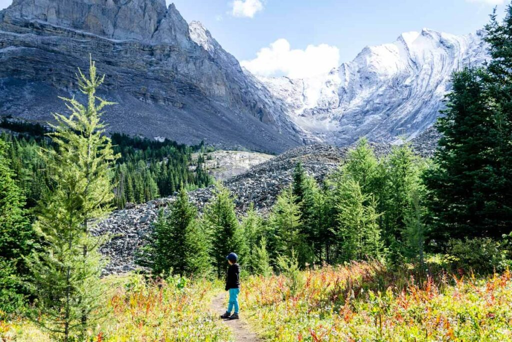 Even kids will appreciate the amazing fall colors in Kananaskis while hiking Arethusa Cirque