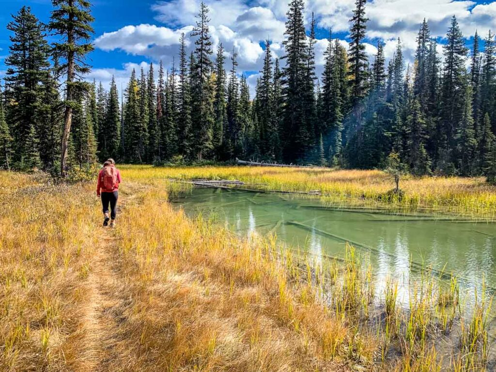 The Twin Lakes trail is a beautiful Banff trail over 15km long