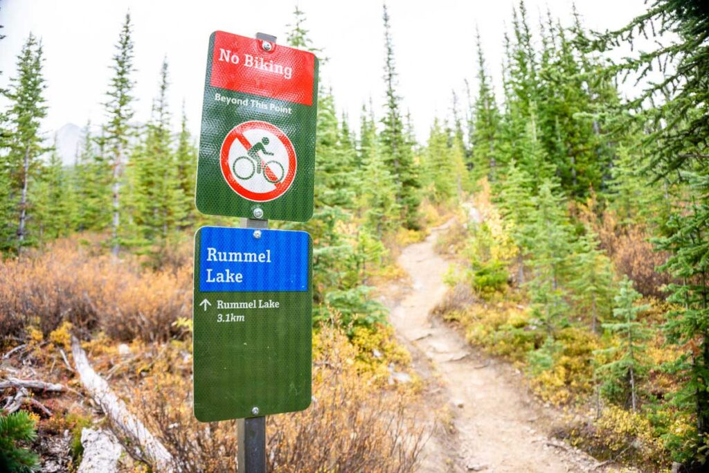 Trail sign marking junction from High Rockies Trail to Rummel Lake
