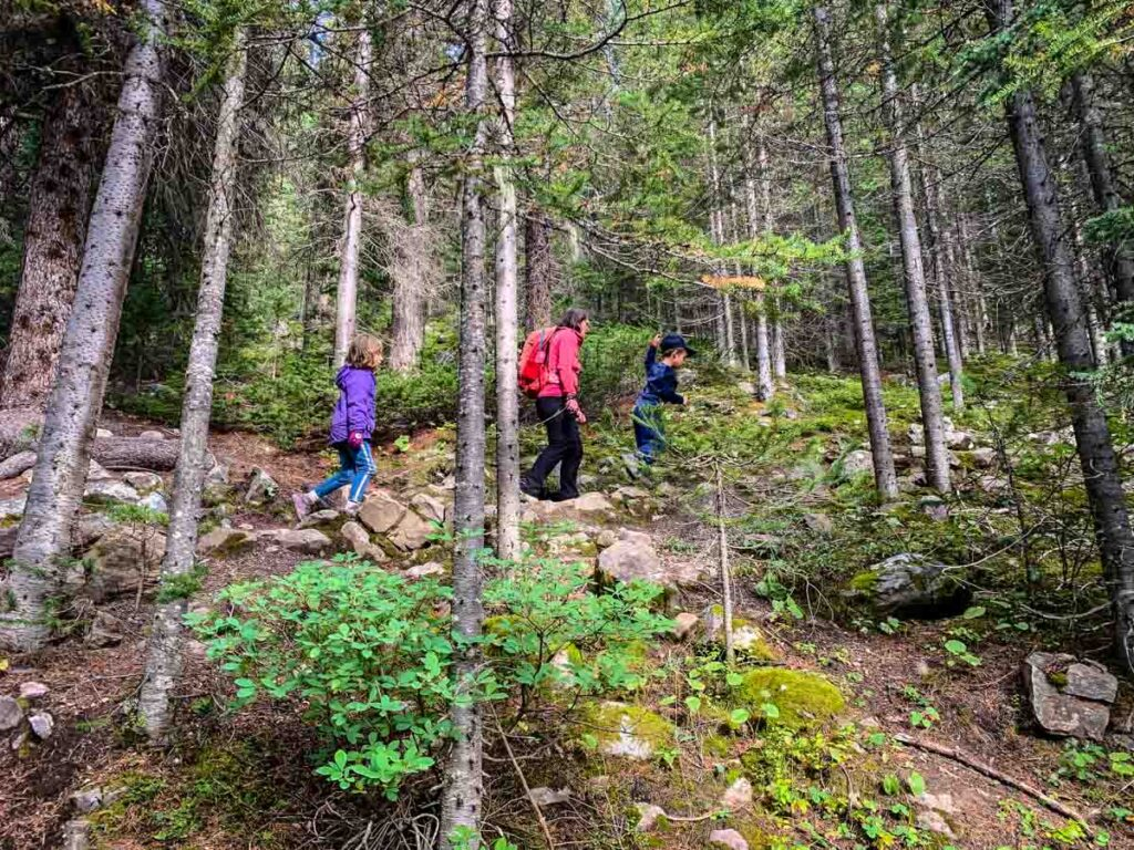 What to Bring for Larch Valley Hike