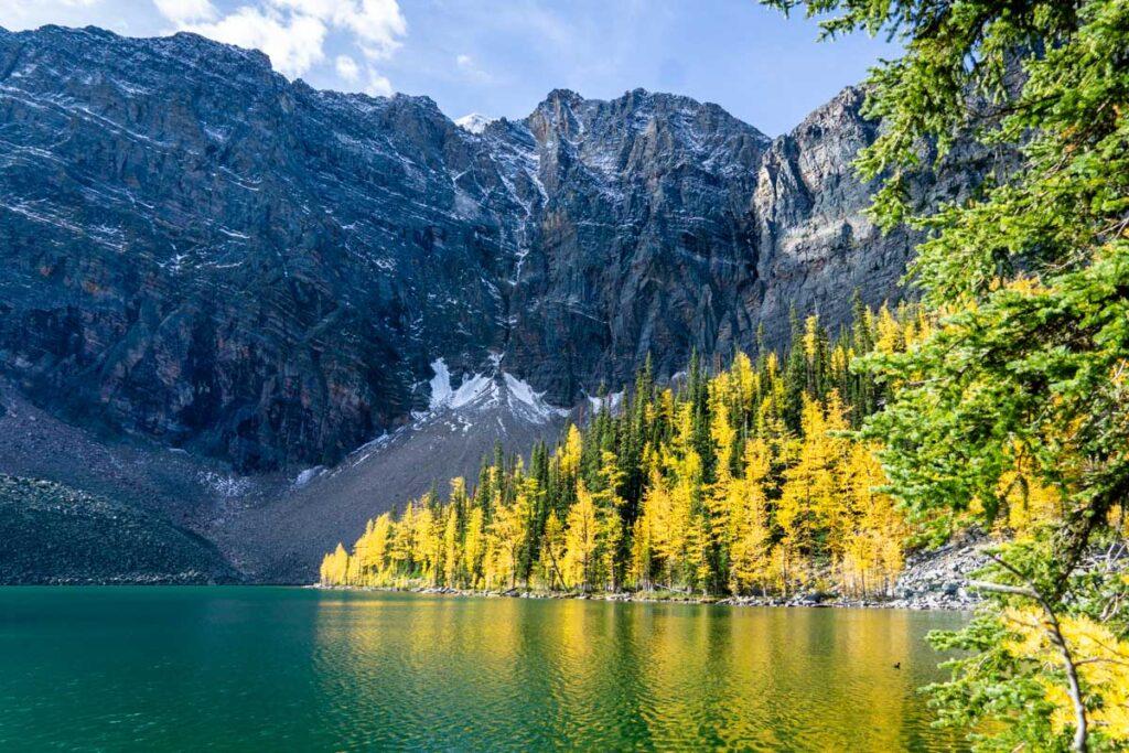 hike to Arnica Lake - Banff Hikes