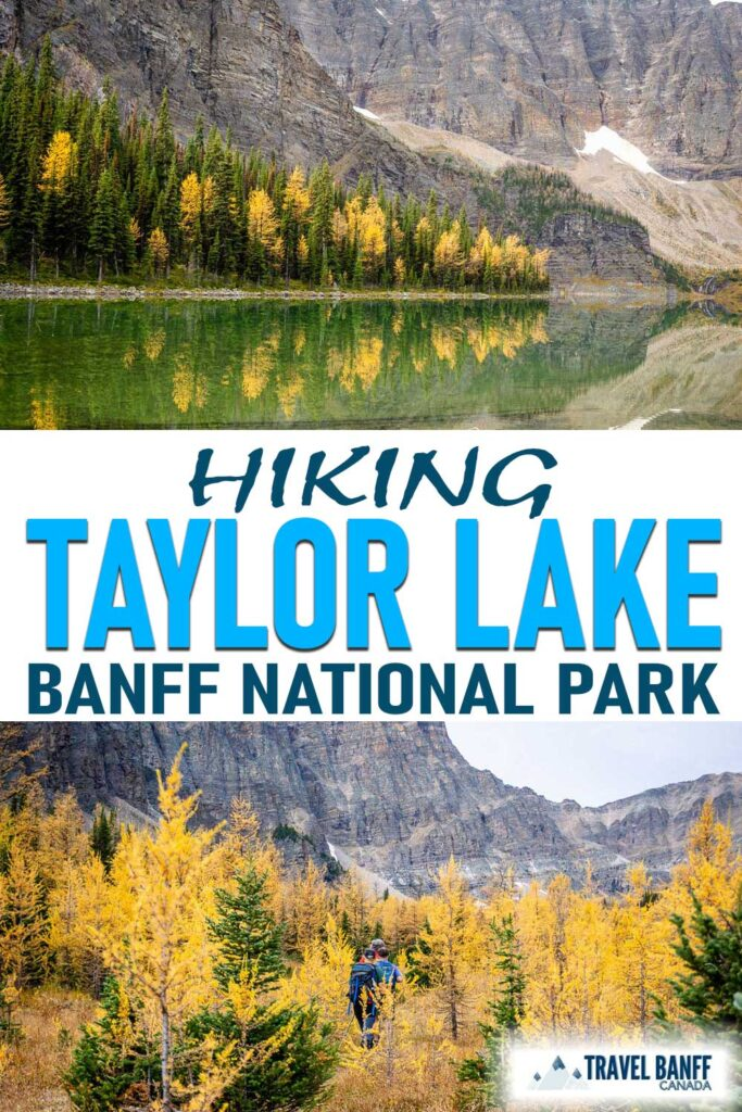 Don't miss hiking to Taylor Lake in Banff National Park. While this hike offers stunning lake views, it's even better in the fall during larch season. This should be one Banff hike for your list!