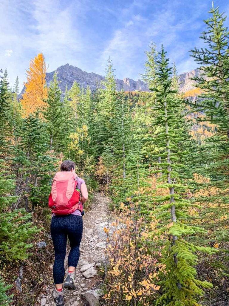 hiking Arnica Lake Trail in Banff
