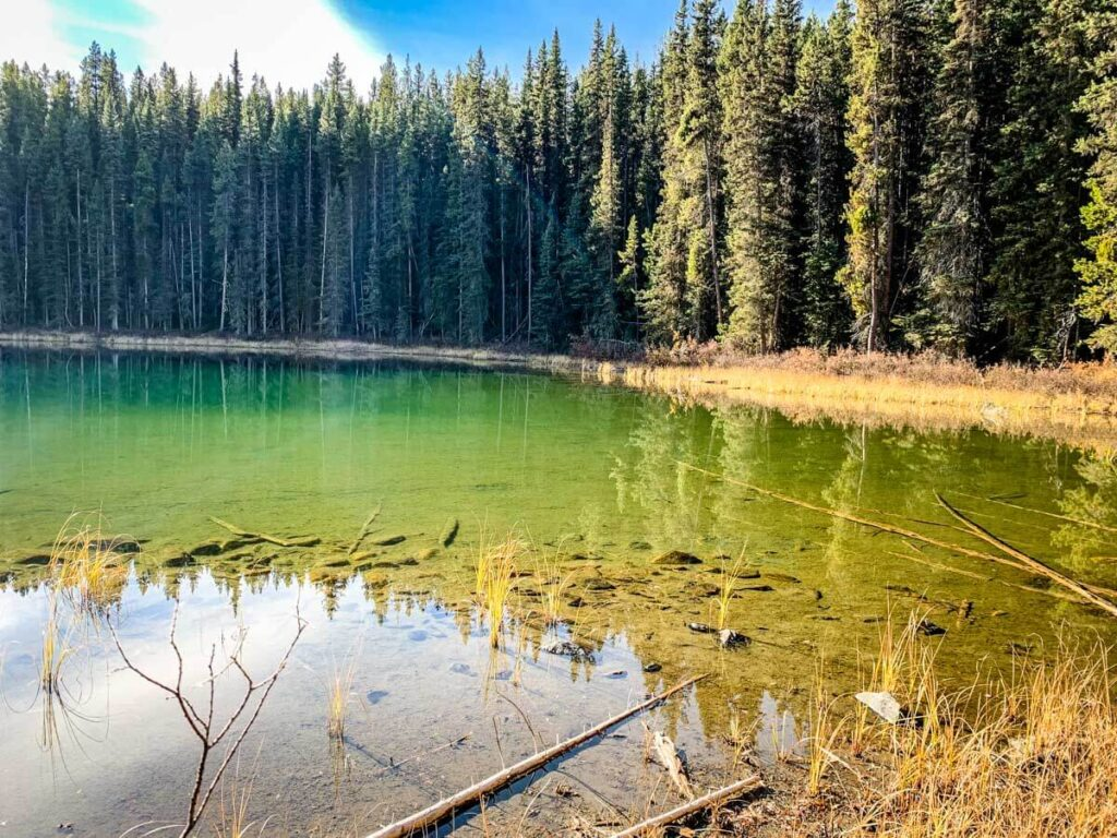 Copper Lake in Banff National Park