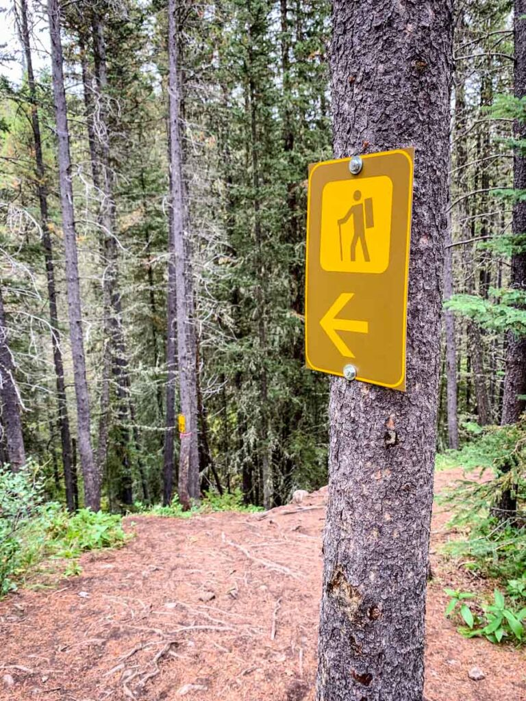 hiking trail marker for Upper Stoney trail in Banff