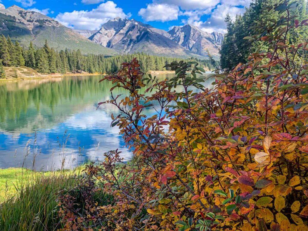 You'll enjoy some beautiful fall colors in Banff along the Johnson Lake hike