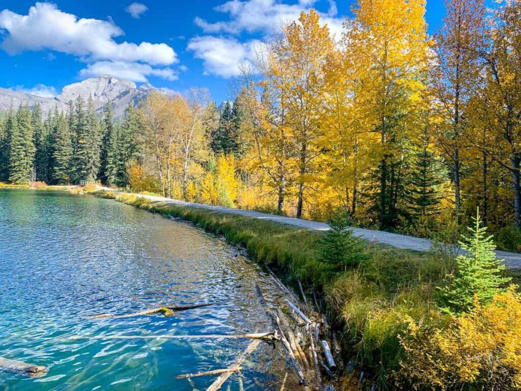 Where to see fall colors in Banff National Park - Johnson Lake, Minnewanka Loop
